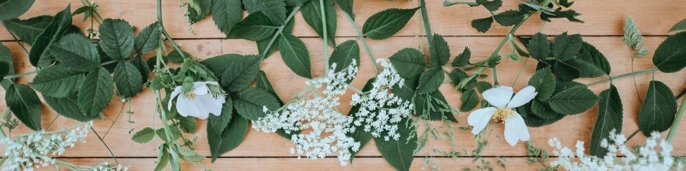 Witte bloemen op een houten ondergrond